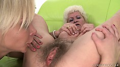 Fresh blondie Lisa goes down on an aged bitch and licks her cunt clean