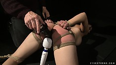 Brunette in bondage is helplessly teased by her playful master