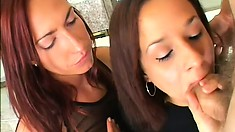 A pair of dirty brunettes help each other to give great head
